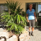 20 year old Lady Palm (Rhapis excelsa) with Jo as scale model under cover outside office March 2019